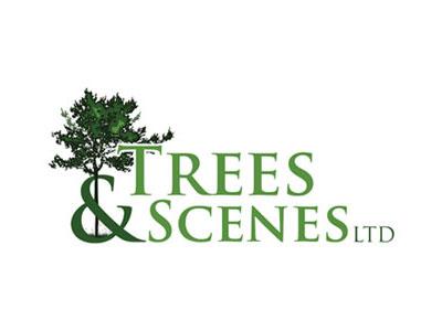 Trees & Scenes